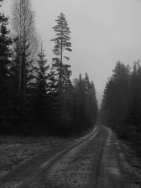 mortaberget_road_bw