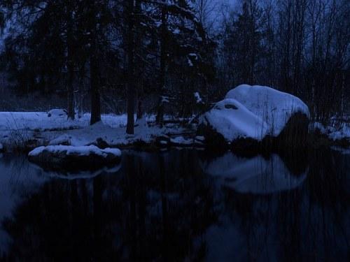 an_natt_skogen
