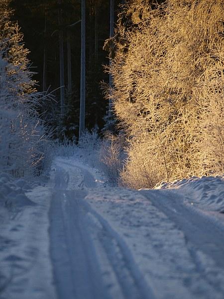 mortaberg_frost_1