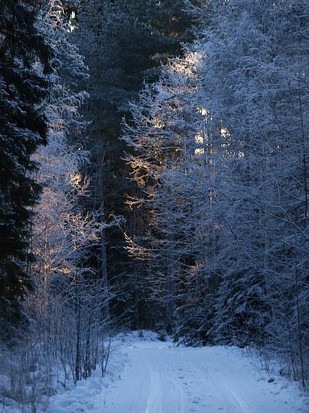mortaberg_frost_2