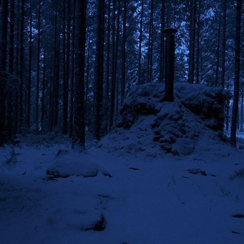 tallmomyren_kolarkoja_natt