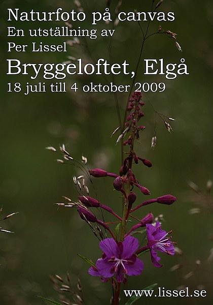poster_elga_18_7__4_10