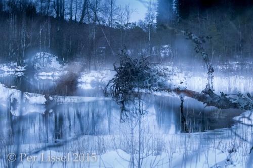 landskap_loevasen_multi_1_0789_20150117