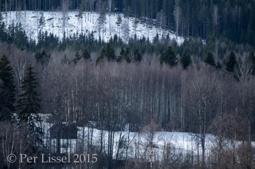 vy_norddalen_1083_20150222