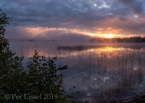 a1__DSF1785-Pano_20190917